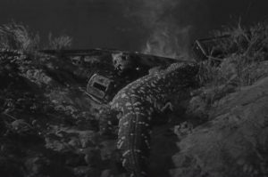 [2091] The Giant Gila Monster
